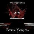 BLACK SEQUOIA - Január 18-án klippremier az extrém metal csapattól