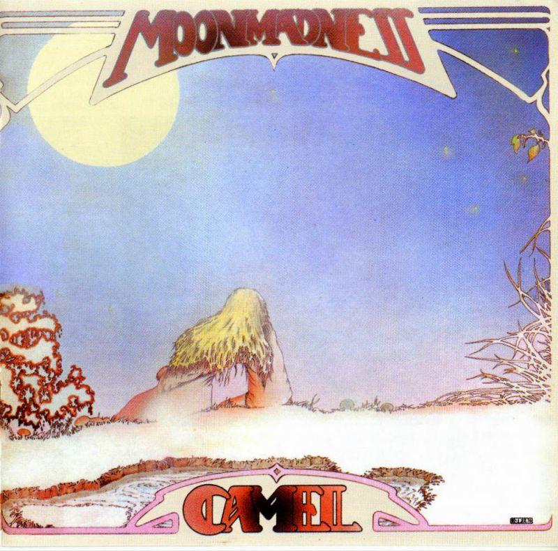 camel_cover.jpg