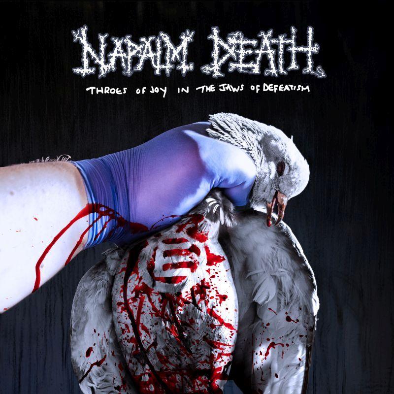 napalm_death_cover.jpg
