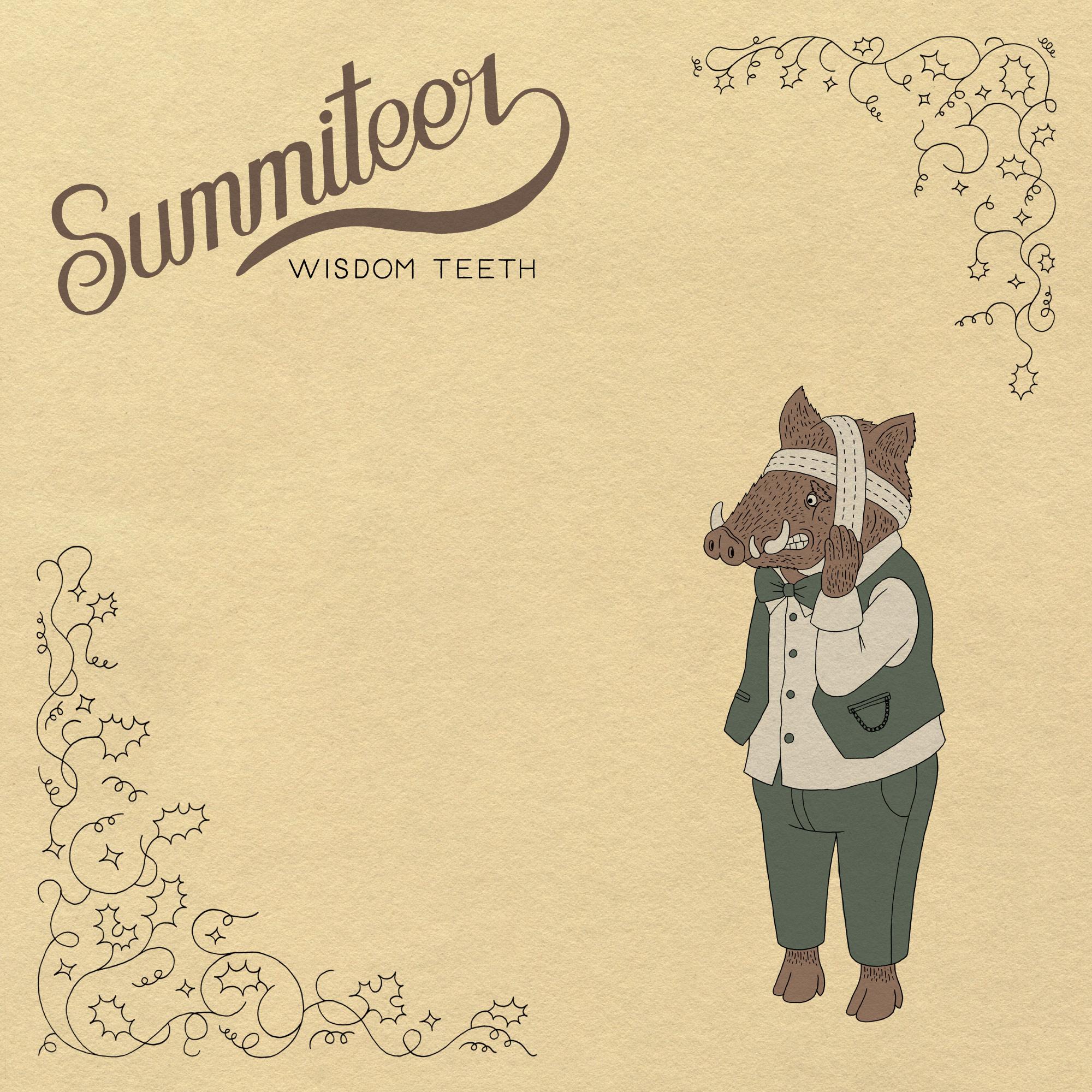 summiteer-wisdomteeth_cover_front.jpg
