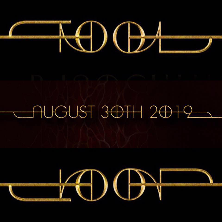 tool_new_logo_gold_2019.png