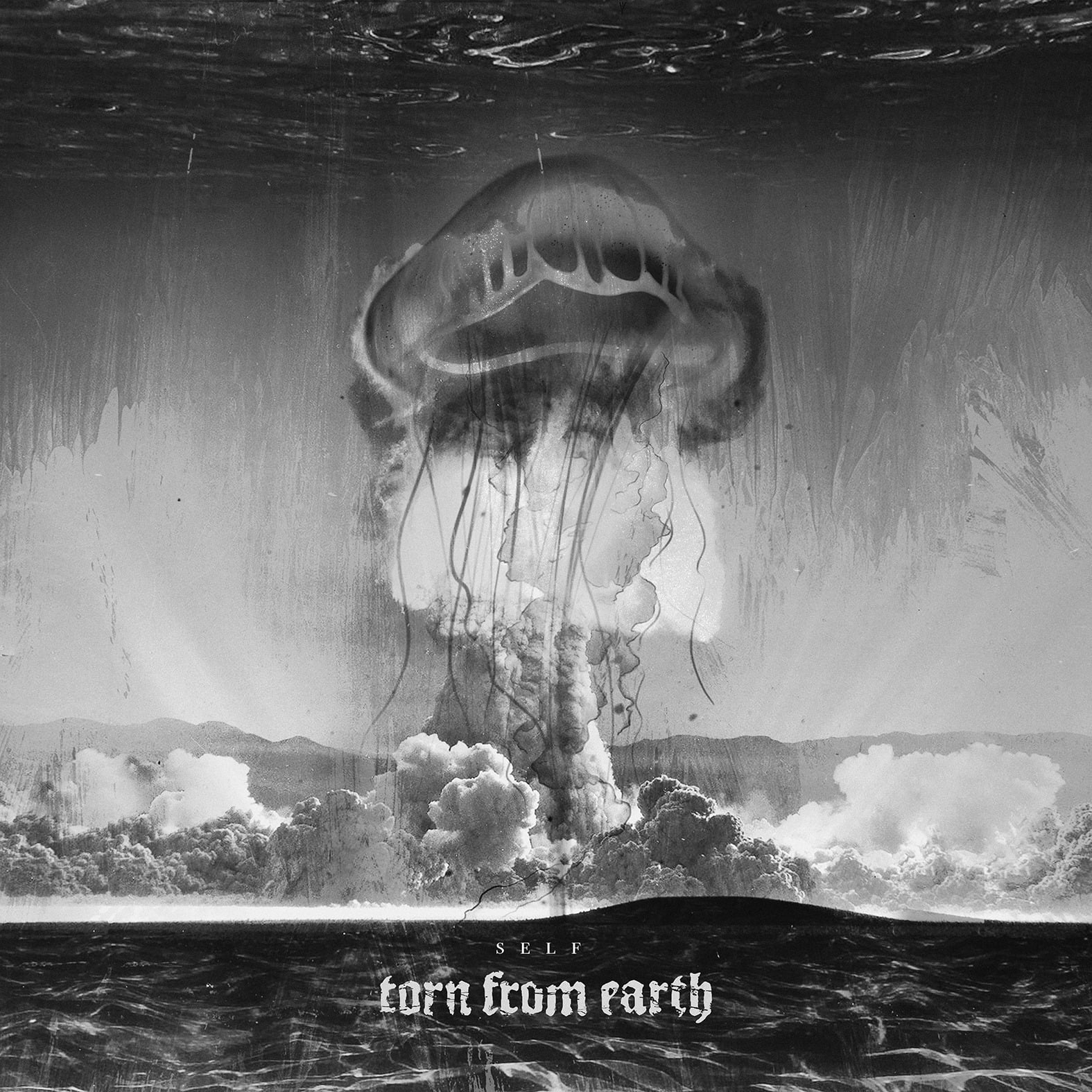 torn_from_earth_cover.jpg