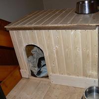 Kutyaház projekt