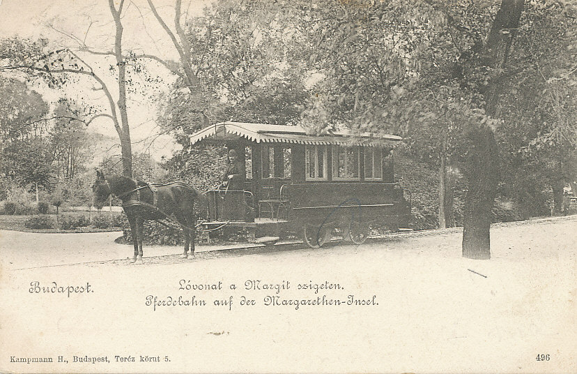 budapest-xiii-kerulet-lovasut-megalloja-a-margitszigeten-_1.jpg
