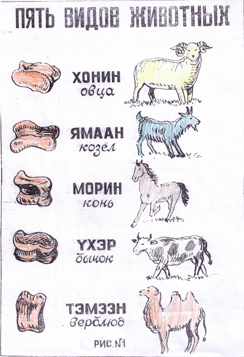 mongol_bokacsontok_kecske_birka_teve_lo.png