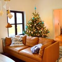 Az elmúlt évek karácsonyai képekben
