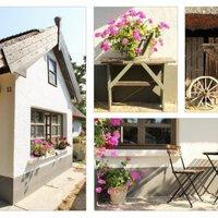 Felújított parasztház a Balaton észak-nyugati csücskében