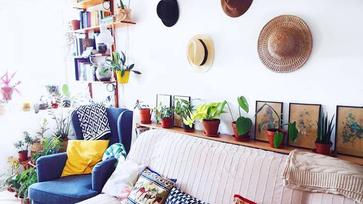 Ismerd meg azt a növényrajongó lányt, aki 300 szobanövénnyel él együtt!
