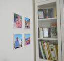 A nyár legjobb családi emlékei a falakon