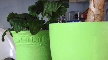 Kaspó redesign, ezúttal akril festékkel – Csináld magad!
