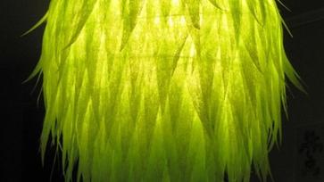 Az ígéret szép szó, ha megtartják úgy jó! 2. – avagy elkészült a nagy, zöld saláta