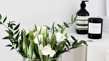 Télűző virágos ötletek otthonodba, avagy induljon a tavasz hadművelet!