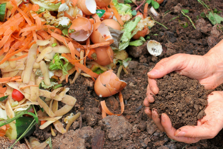 compost-pile-hands.jpg