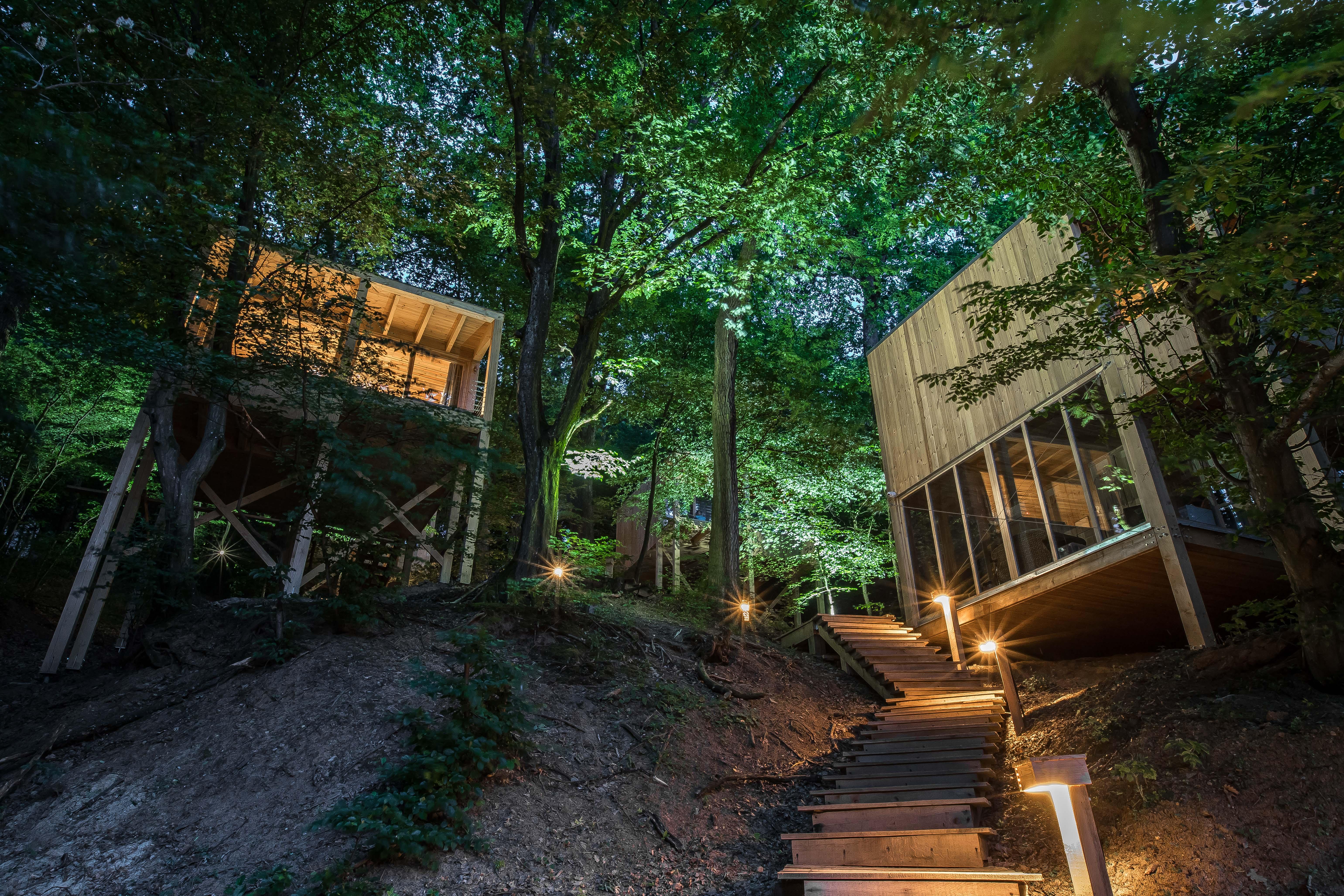 treehouses-noszvaj-32.jpg