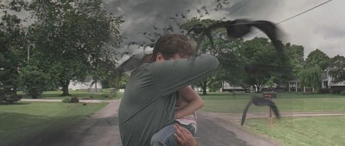 take-shelter-movie-birds-michael-shannon.jpg