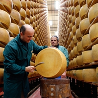 Svájci sajtszámlát nyitanék, kisasszony!