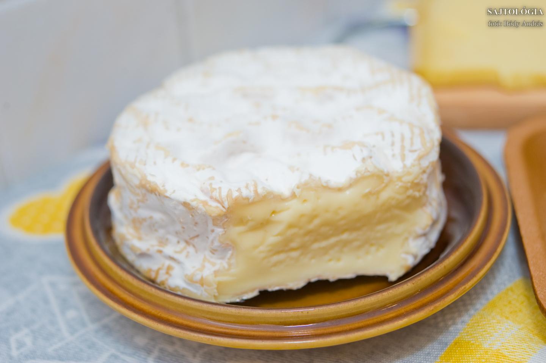 Camembert AOC de Normandie