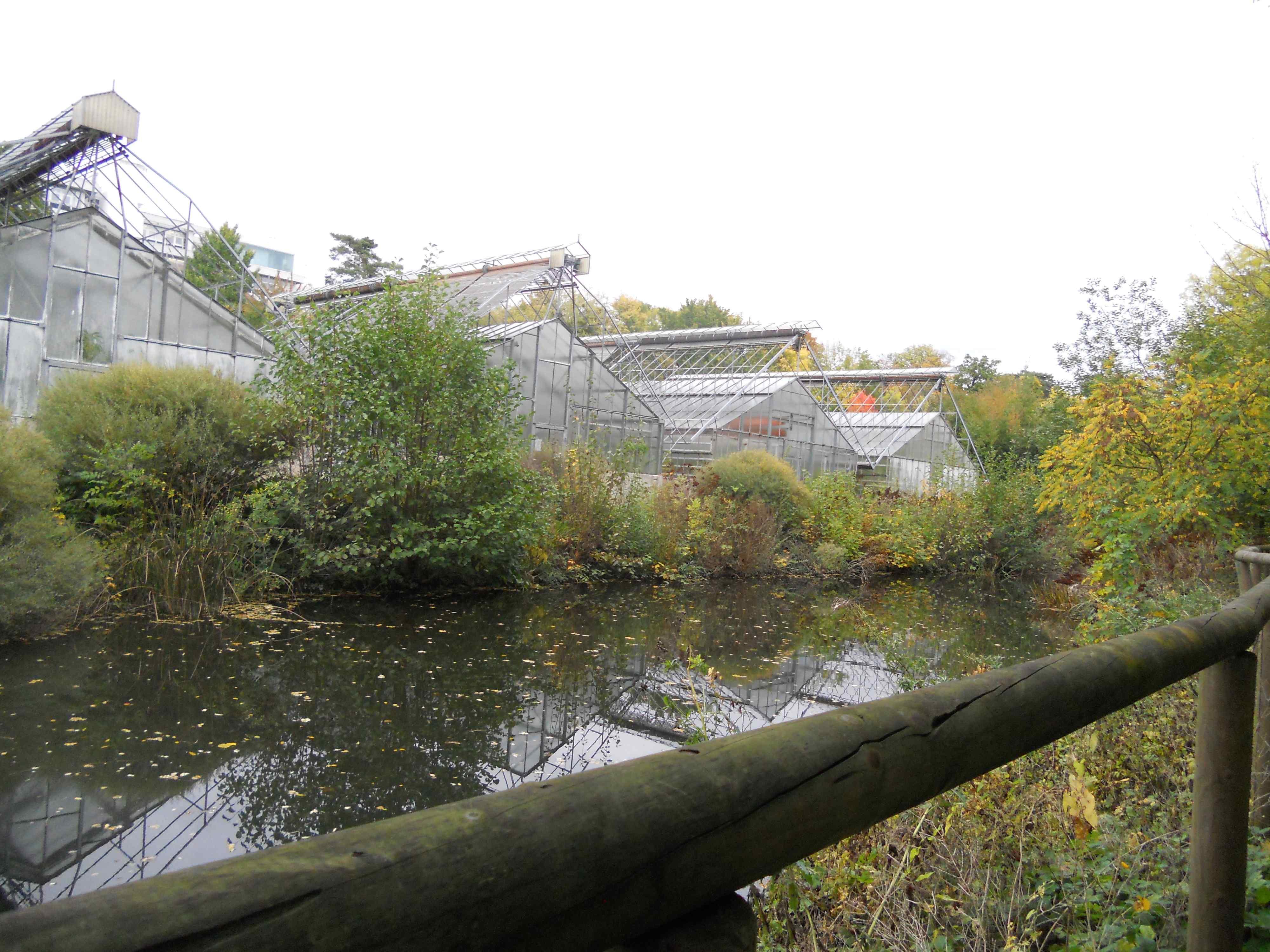 Kastélypark és kisérleti üvegházak