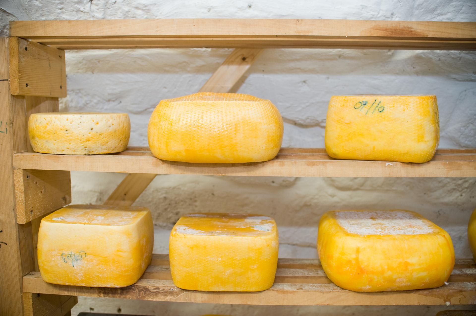 Érlelt sajtok a polcokon