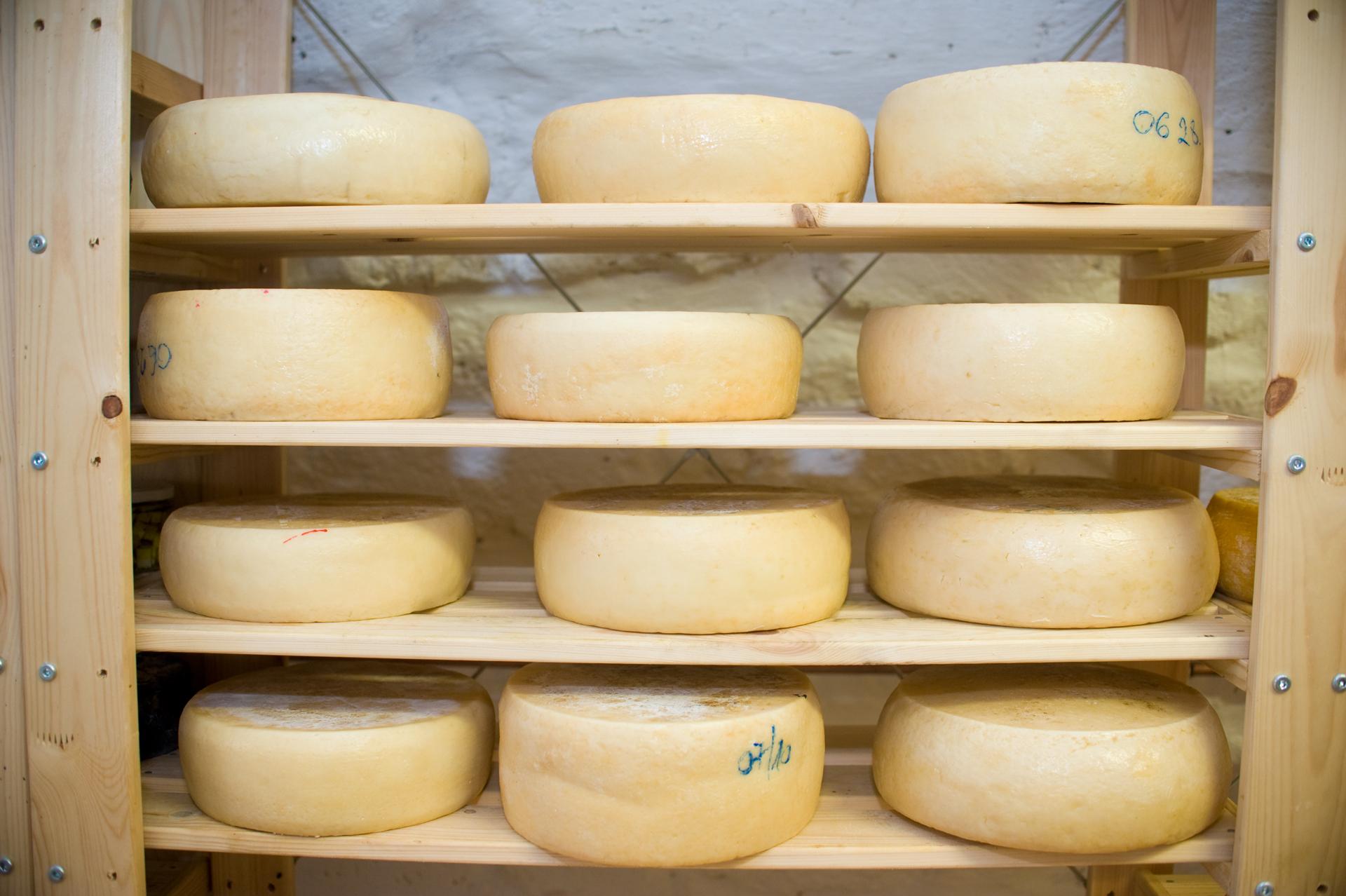 Érlelt sajtok a polcon