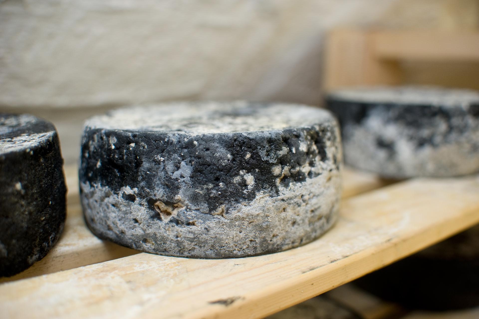 Negro sajt érlelés