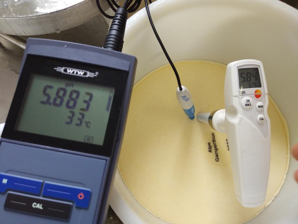 Sajtellenőrzés pH mérővel