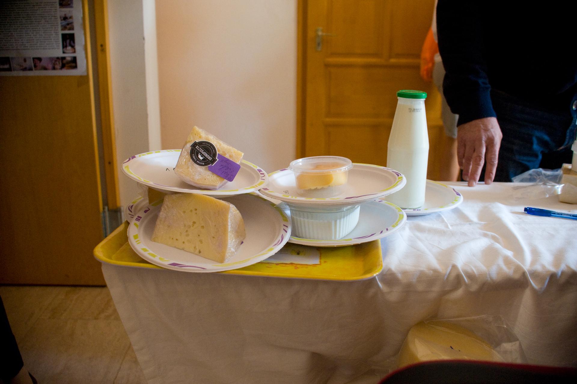 Érkeznek a minták a sajtverseny zsűrijének értékeléséhez.