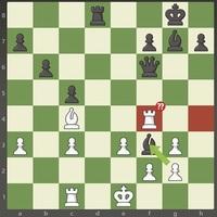 Sakk amatőröknek - a sakkot mattra játsszák