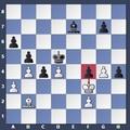 Sakkfeladat - amatőröknek és kezdő versenysakkozóknak