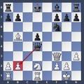 Sakkfeladat - kezdő versenysakkozóknak