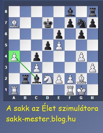 lengyel_feri6.jpg