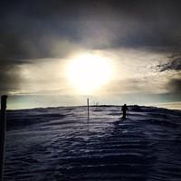 Az Alacsony-Tátra gerincen Cinó, a karók jelzik az utat télen