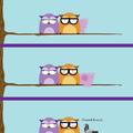 A hoppá galamb :: Avagy: a bizalom foka