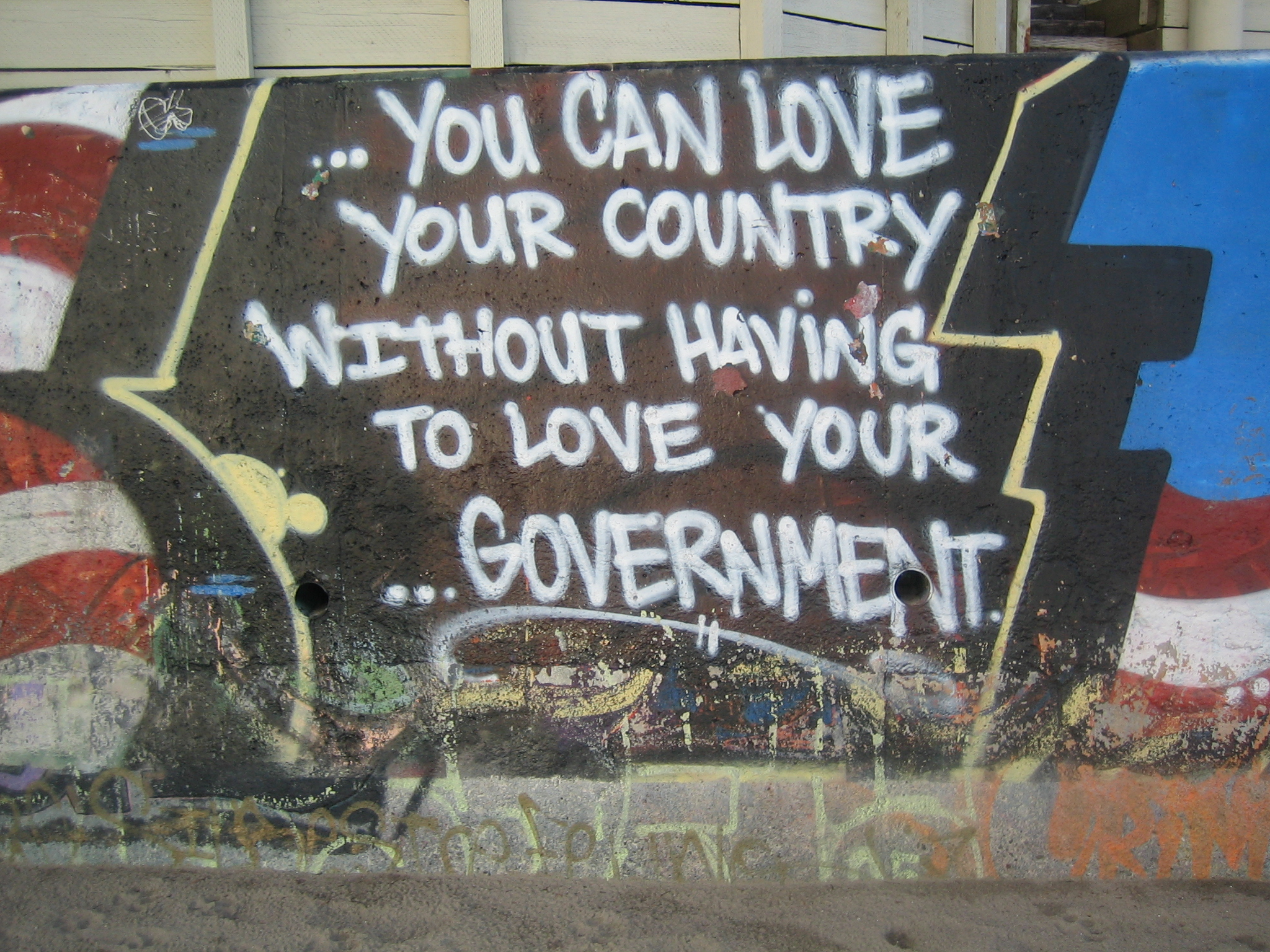 Love_your_country,_not_government.jpg