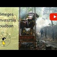 Tömeges halottégetés Ubudban