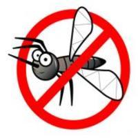 Napi érdekesség: Szúnyogriasztó vagy körömlakklemosó?