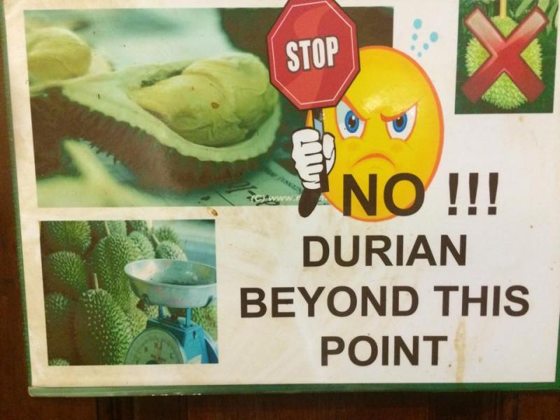 Napi érdekesség: Durian, a gyümölcsök királya