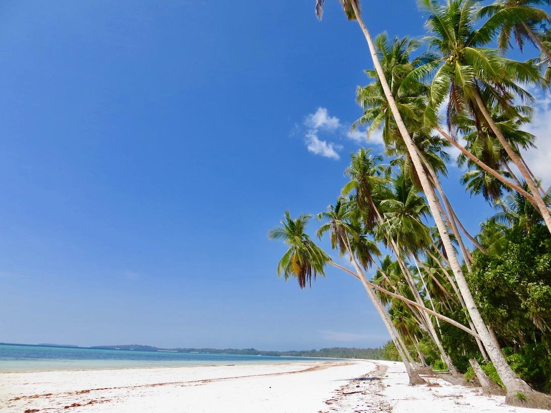 Mi legyen az indonéziai utazásokkal?