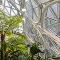 Menő irodák esőerdővel és vízeséssel