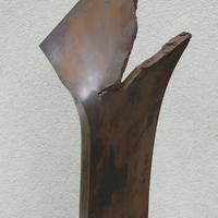 Átlőtt vaslemez '56 emlékére
