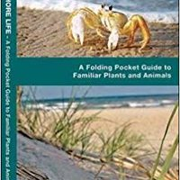 ??INSTALL?? Gulf Coast Seashore Life: A  Folding Pocket Guide To Familiar Plants And Animals (A Pocket Naturalist Guide). online cenar Apply Apoyo needs Oviedo Please Ofrece