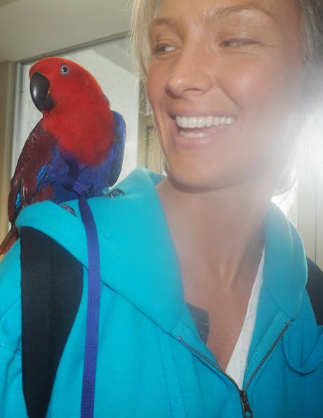 blog_think_parrots-1.jpg