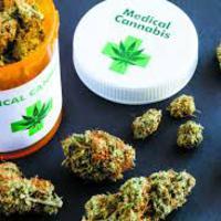 Orvosi marihuána: mit mondanak a legjobb bizonyítékok?