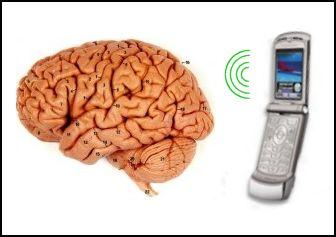 cell-phone-brain-cancer.jpg