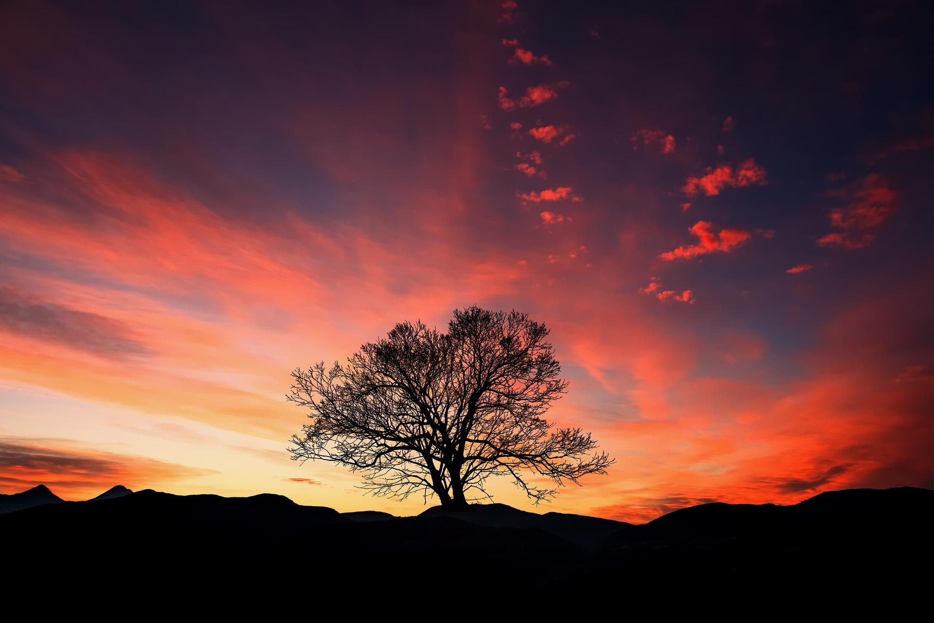 sunset-3047544_1920.jpg