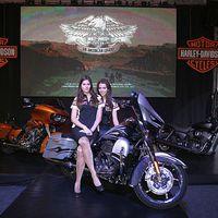 Meghökkentően látványos új Harley-k