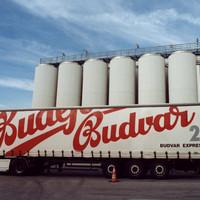 A járvány a sört sem kíméli