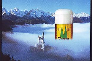 Milyen színű a sör habja?