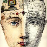 Az evolúció adta, az evolúció elveszi: absztrakt gondolkodás?