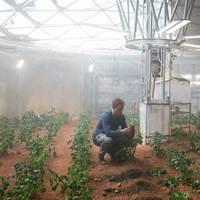 Tényleg termeszthetünk krumplit a Marson?